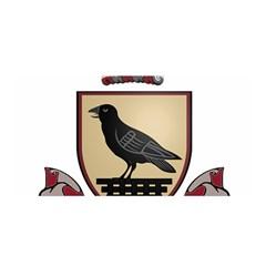 County Dublin Coat of Arms  Satin Wrap