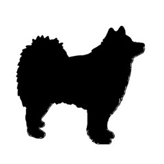 Finnish Lapphund Silhouette Black Magic Photo Cubes