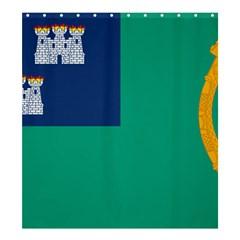 City of Dublin Flag Shower Curtain 66  x 72  (Large)