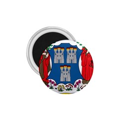 City of Dublin Coat of Arms 1.75  Magnets