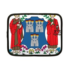 City of Dublin Coat of Arms Netbook Case (Small)