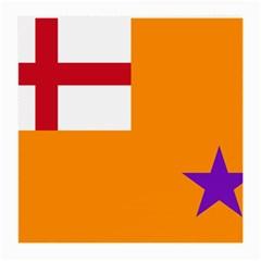 Flag of the Orange Order Medium Glasses Cloth