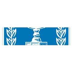 Emblem of Israel Satin Scarf (Oblong)
