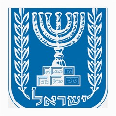 Emblem of Israel Medium Glasses Cloth (2-Side)