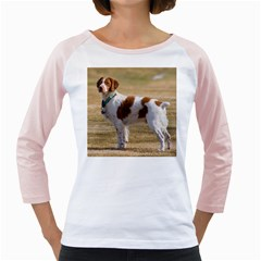 Brittany Spaniel Full Girly Raglans