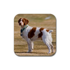 Brittany Spaniel Full Rubber Square Coaster (4 pack)
