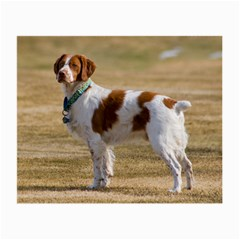 Brittany Spaniel Full Small Glasses Cloth