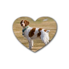 Brittany Spaniel Full Rubber Coaster (Heart)