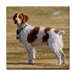 Brittany Spaniel Full Face Towel