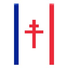Flag Of Free France (1940 1944) Shower Curtain 48  X 72  (small)