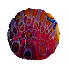 Micro Macro Belle Fisher Nature Stone Standard 15  Premium Round Cushions