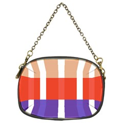 Compound Grid Chain Purses (Two Sides)