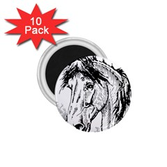 Framed Horse 1 75  Magnets (10 Pack)