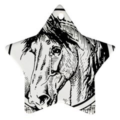 Framed Horse Star Ornament (two Sides)