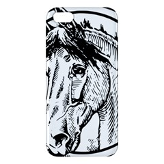 Framed Horse Apple Iphone 5 Premium Hardshell Case