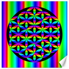 Rainbow Flower Of Life In Black Circle Canvas 16  x 16