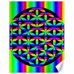 Rainbow Flower Of Life In Black Circle Canvas 18  X 24