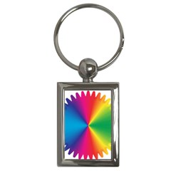 Rainbow Seal Re Imagined Key Chains (rectangle)
