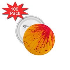 Big Bang 1 75  Buttons (100 Pack)