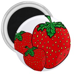 Strawberry Holidays Fragaria Vesca 3  Magnets