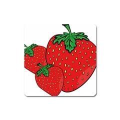 Strawberry Holidays Fragaria Vesca Square Magnet