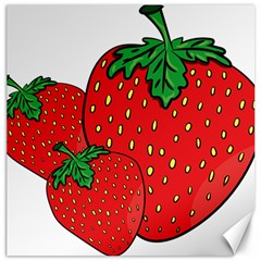 Strawberry Holidays Fragaria Vesca Canvas 16  X 16