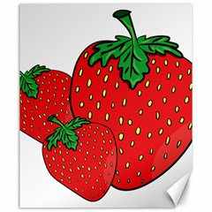 Strawberry Holidays Fragaria Vesca Canvas 20  X 24