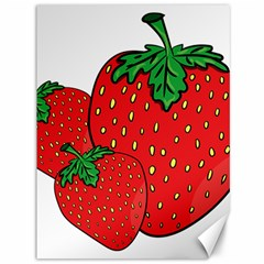 Strawberry Holidays Fragaria Vesca Canvas 36  X 48