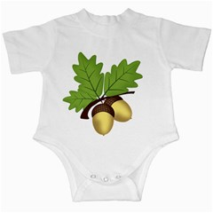 Acorn Hazelnuts Nature Forest Infant Creepers