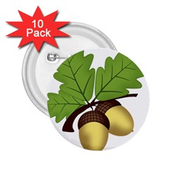 Acorn Hazelnuts Nature Forest 2 25  Buttons (10 Pack)