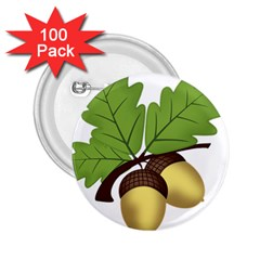 Acorn Hazelnuts Nature Forest 2 25  Buttons (100 Pack)