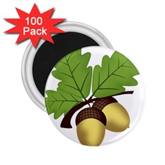 Acorn Hazelnuts Nature Forest 2 25  Magnets (100 Pack)