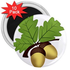 Acorn Hazelnuts Nature Forest 3  Magnets (10 Pack)