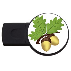 Acorn Hazelnuts Nature Forest Usb Flash Drive Round (4 Gb)