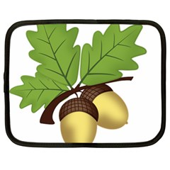 Acorn Hazelnuts Nature Forest Netbook Case (xl)