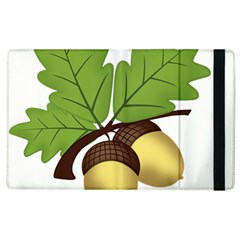 Acorn Hazelnuts Nature Forest Apple Ipad 2 Flip Case