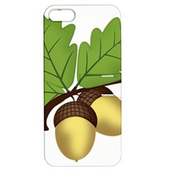 Acorn Hazelnuts Nature Forest Apple Iphone 5 Hardshell Case With Stand