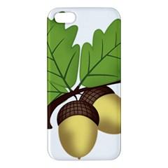 Acorn Hazelnuts Nature Forest Apple iPhone 5 Premium Hardshell Case