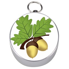 Acorn Hazelnuts Nature Forest Silver Compasses