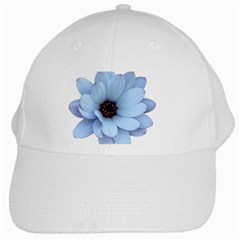 Daisy Flower Floral Plant Summer White Cap