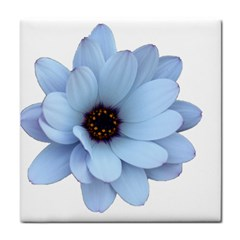 Daisy Flower Floral Plant Summer Tile Coasters