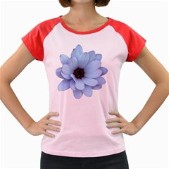 Daisy Flower Floral Plant Summer Women s Cap Sleeve T-Shirt