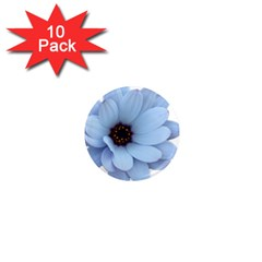 Daisy Flower Floral Plant Summer 1  Mini Magnet (10 pack)