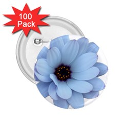 Daisy Flower Floral Plant Summer 2 25  Buttons (100 Pack)