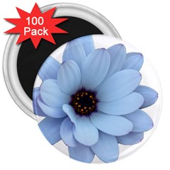 Daisy Flower Floral Plant Summer 3  Magnets (100 pack)
