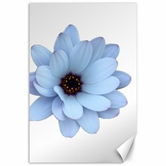 Daisy Flower Floral Plant Summer Canvas 24  X 36