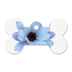 Daisy Flower Floral Plant Summer Dog Tag Bone (two Sides)