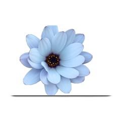 Daisy Flower Floral Plant Summer Plate Mats