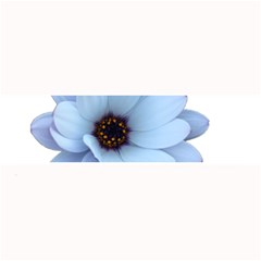 Daisy Flower Floral Plant Summer Large Bar Mats