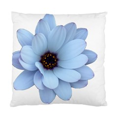 Daisy Flower Floral Plant Summer Standard Cushion Case (two Sides)